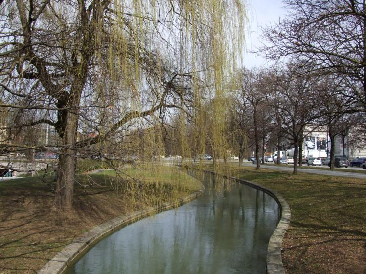 Willow over river
